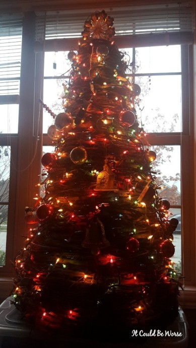 Seeing All of the Doctors - Another Month in My Crohn's Journey - Christmas Tree Mary Horsley