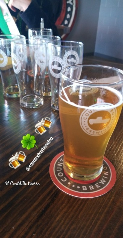 No Luck of the Irish for Me - It Could Be Worse Blog - Mary Horsley